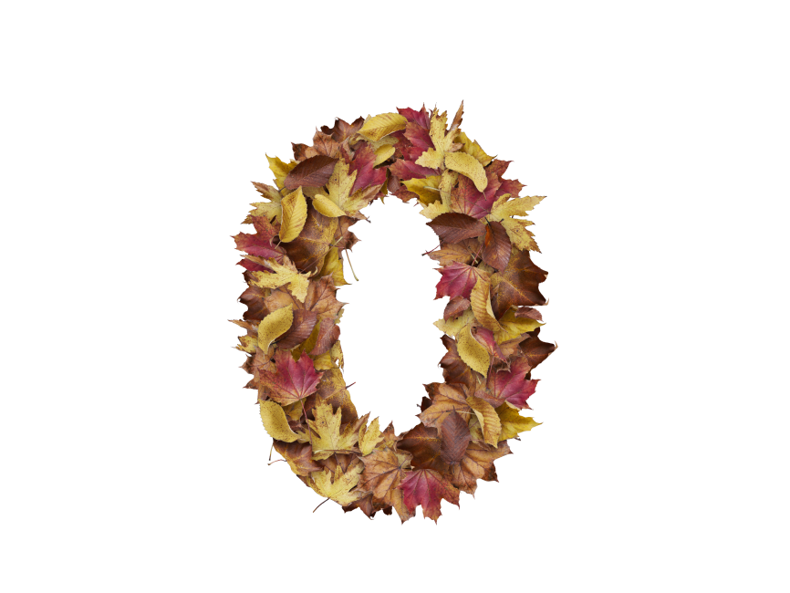 0 Number with Dry Leaves