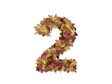 2 Number with Dry Leaves