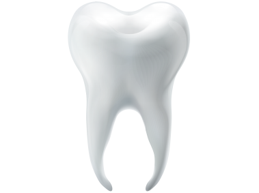 3D Tooth
