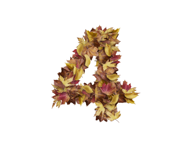 4 Number with Dry Leaves