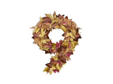 9 Number with Dry Leaves