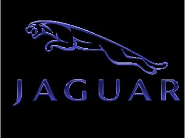 Jaguar Metallic Blue Logo