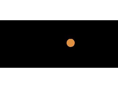 Access Point Logo