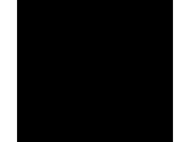 Amazon icon Logo