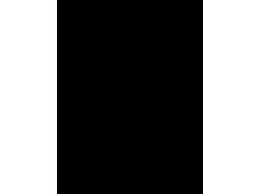 Armoredprotection2 Logo