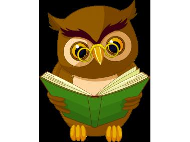 Transparent Owl with Book
