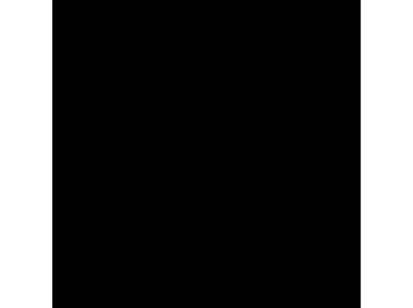 Volkswagen Black Line Logo